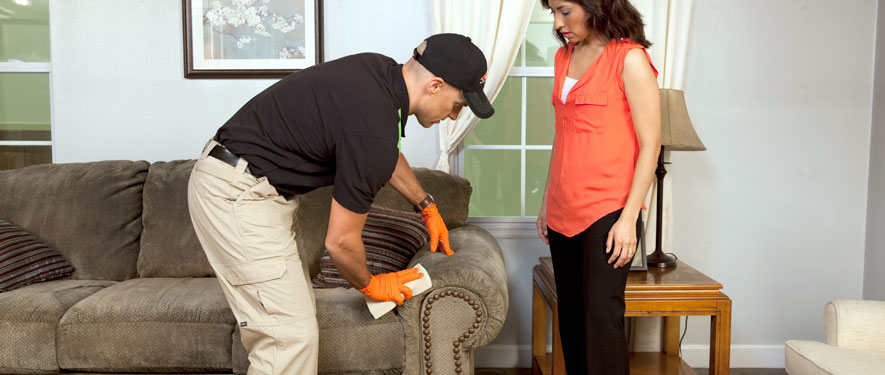 North Las Vegas, NV carpet upholstery cleaning